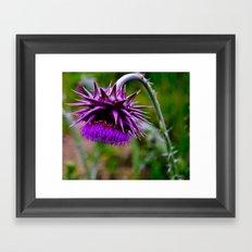 The Ugly Flower Framed Art Print