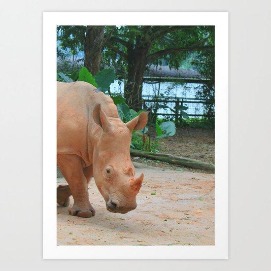 sandy rhino Art Print
