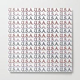Patriotic 1 Metal Print