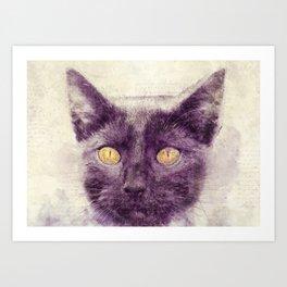 Black kitty art Art Print
