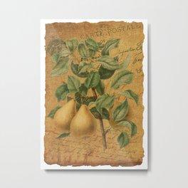 Vintage Pears & Ephemera Collage - Vintage Botanical Pears Illustration Metal Print