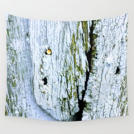 Weathered Barn Wall Wood Texture Wall Tapestry