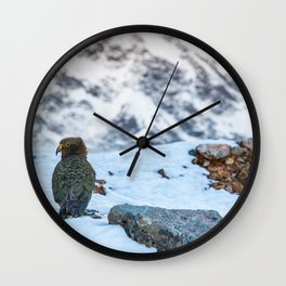 Kea parrot bird in the snow mountains of New Zealand Wall Clock