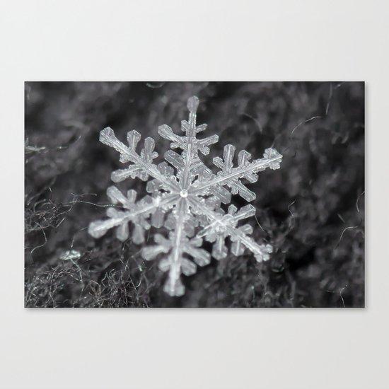 Snowflake Closeup #1 Canvas Print