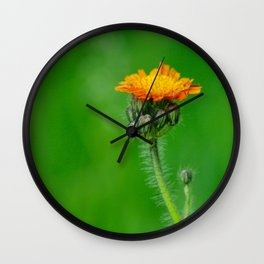 Orange summerflower Wall Clock