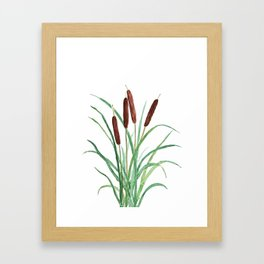cattails plant Framed Art Print