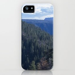 The Sea of trees iPhone Case