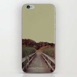 Our Youth is Fleeting, Old Age is Just Around the Bend. iPhone Skin