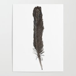 Crow Feather Poster