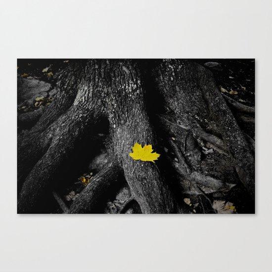 A spark of color Canvas Print