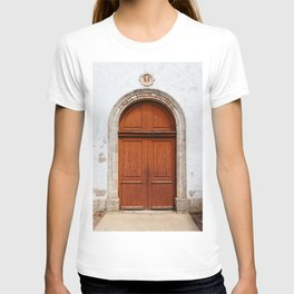 Liberty, equality and fraternity T-shirt