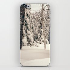 Winter Woods 2 iPhone & iPod Skin