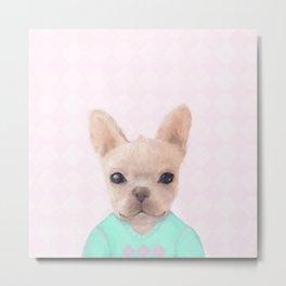 Portrait Of French Bull Dog Metal Print