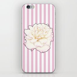 Pale Rose on Stripes iPhone Skin