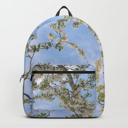 Changing Beauty Backpack