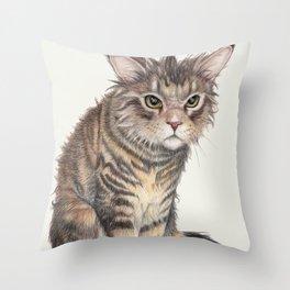 Messy Cat Throw Pillow