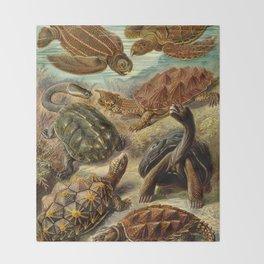 Sea Turtle Collage-Ernst Haeckel Throw Blanket