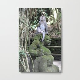 Monkey Contemplation Metal Print