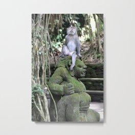Monkey Contemplation Metal Print