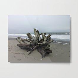 Sand Flower Metal Print