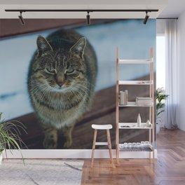 Cat by Olga Kononenko Wall Mural