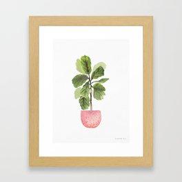 Fiddle-Leaf Fig (Watercolor) Framed Art Print