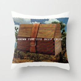 Known for it's Deep Color (Joshua Trees and Aaron Poritz Lunchbox) Throw Pillow