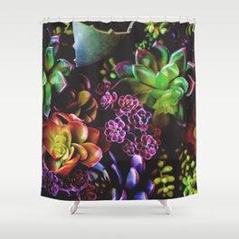 Colorful Succulent Plants Shower Curtain