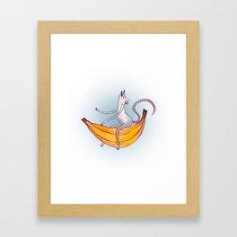 Rat on a Banana Framed Art Print