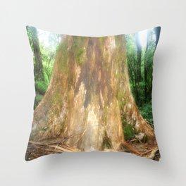 """Mountain Ash Tree (Aka """"The Big Boy"""") Throw Pillow"""
