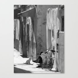 Man and Cat Marrakesh Canvas Print