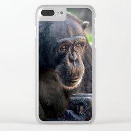 Chimp Clear iPhone Case