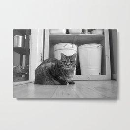 Cat n Trash Metal Print