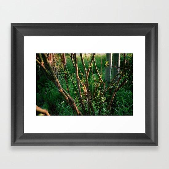 Northeast Oregon Framed Art Print