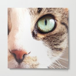 Poker Cat Face Metal Print