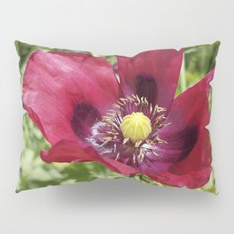Pretty Purple Poppy Flower Pillow Sham