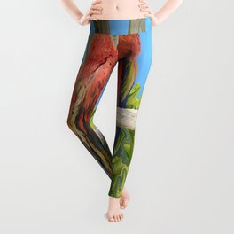 Scarlet Macaw Parrots Perching Leggings