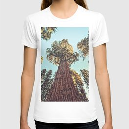 The Largest Tree in the World T-shirt