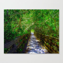 Path under the Tree Canopy Canvas Print