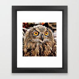 ArtAnimal Owl Framed Art Print