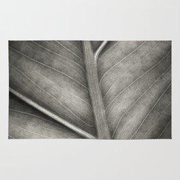 Macro photo of leaf. Black & white. Rug