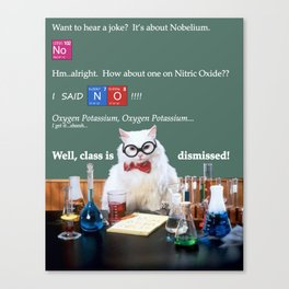Chemistry Cat Canvas Print