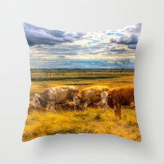 Late Afternoon Cows Throw Pillow