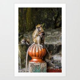 Monkey and baby at Kuala Lumpur | The colors of Batu Caves, Malaysia | photoprint - rainbow  - travel - photography - art print Art Print