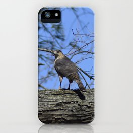 The Cooper Hawk iPhone Case