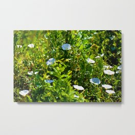 Patch Of White Metal Print