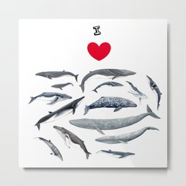 I love whales design Metal Print