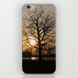 Ixonia Marsh iPhone Skin