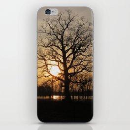 Ixonia Marsh iPhone Skin