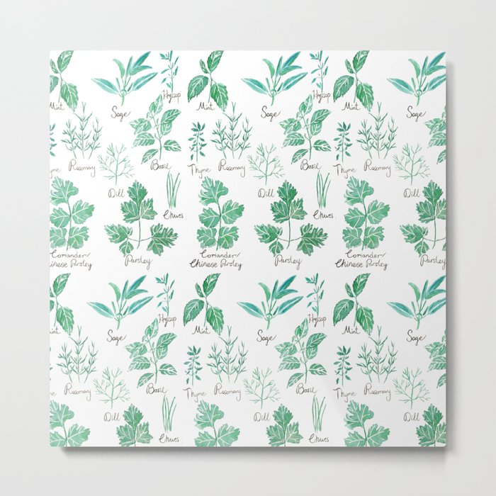 green herbs family watercolor Metal Print